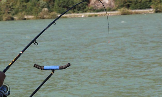 Pescuitul la feeder pe Dunare si in Delta Dunarii.