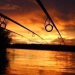 Lansete pentru pescuitul crapului pe Dunare si in Delta Dunarii